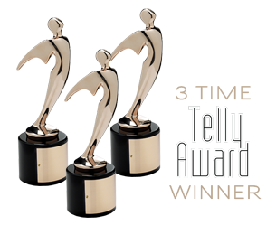 3 Time Telly Award
